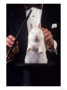 218830magician-pulls-rabbit-out-of-hat-posters1